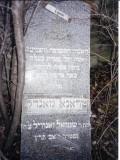 Treina MANDEL Daughter of Shmuel Zanvill
