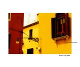 Color - 1 copy.jpg