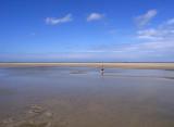 Big Beach Schiermonnikoog.JPG