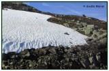 hauts plateaux du Hardangervidda