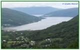 Gratangen (fjord)