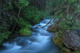 Water Aspen