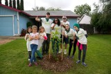 Lincoln Village Tree Planting 05 21 16