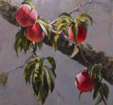 Peaches 22 x 23