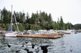 Port Renfrew with Island Outfitters July 2015