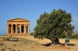 Viaggio in Sicilia  - Trip to Sicily  -  Viaje a Sicilia