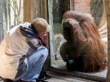 Steve with Orangutan