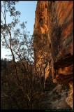Below the cliff line