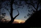 Sunset Silence