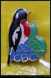 Celebrate Bird Conservation