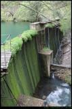 Blue Lake Dam - Jenolan Caves