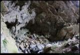 Devils Coach House - Jenolan Caves