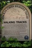 Walking tracks - Jenolan Caves