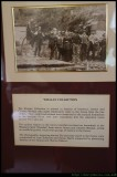 The whalan Collection of Photos