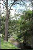 Jenolan Caves Creek