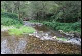 Jenolan Caves Creek - river crossing