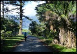 Main Road - walking to the lagoon