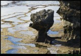 LHI -  rock formations on Middle beach