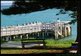 Lord Howe Island - Jetty