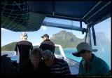 LHI - coral viewing