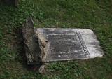 Lower cemetery #2