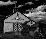 Sunrise Farm (Color version below)