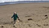 Walking on the beach - Nauset Light Beach