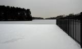 Gray dayin winter