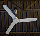 Fan in winter
