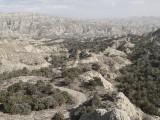 Vasjlovani National Park