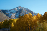 Eastern Sierra Fall 2013