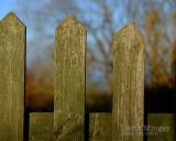 Apr 6 - Gate