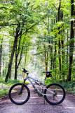 076-2013 BikeInItsNaturalEnvironment