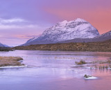 Liathach Pink