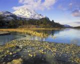 Loch Clair Gold 2