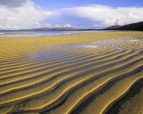 Gold Bar Traigh Lar