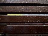20130916_9160950 A Brief Return to Rain (Mon 16 Sep)