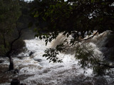 8080683 - The Falls