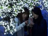 20150710_008666 Walking In A Fake Winter Wonderland (Fri 07 Jul 15)