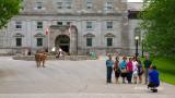 Tourists at Rideau Hall I