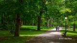 Walk to Rideau Hall