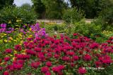 Maplelawn Historic Garden