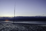 Staak bij zonsopkomst - Stake at sunrise