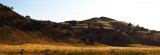 Golden hills west of Yosemite