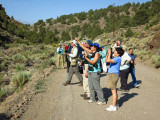 Donna with the Joppa Flats group on the way to Bodie