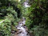 Canopy Lodge river