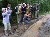 Muddy Birding on Pipeline Rd
