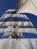 All five sails up