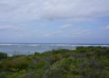 Surrounding reef