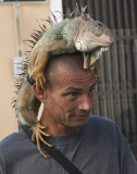 Guy with Iguana SUEs great photo